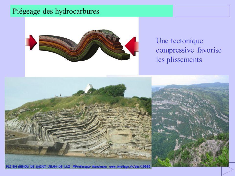 Une tectonique compressive favorise les plissements Piégeage des hydrocarbures