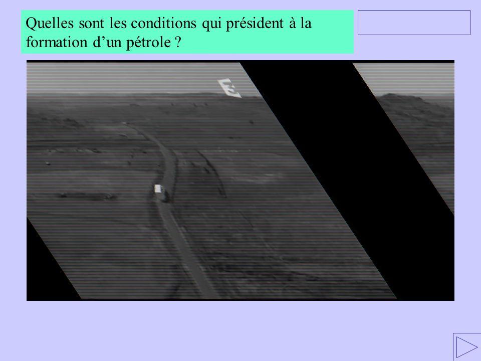 (Le candidat volontaire pour répondre est au 3 ème rang à gauche) Quelles sont les conditions qui président à la formation d'un pétrole ?