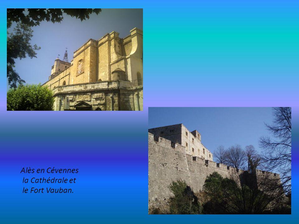 Alès en Cévennes la Cathédrale et le Fort Vauban.