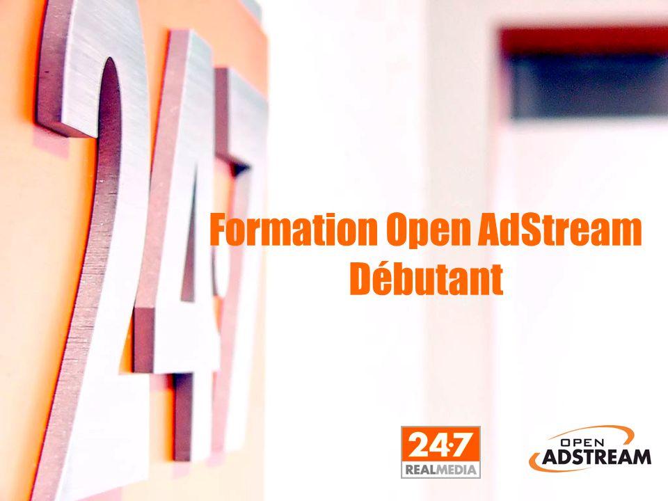 L 'interface de programmation ■ Campaign ID (Nom de la campagne – 64 caractères) ■ Nom de la campage ■ Description ■ Annonceur (L'identifiant unique de l'annonceur associé à la campagne.