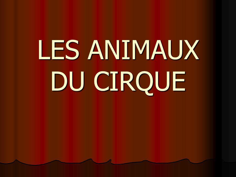 LES ANIMAUX DU CIRQUE