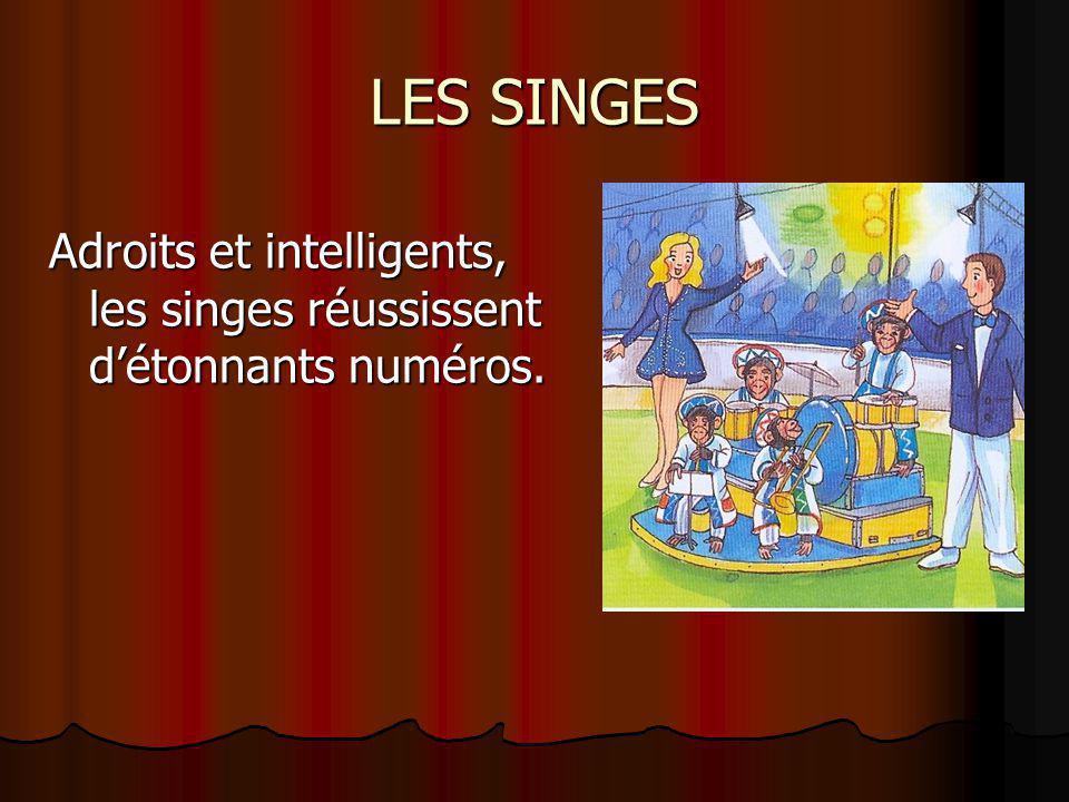 LES SINGES Adroits et intelligents, les singes réussissent d'étonnants numéros.