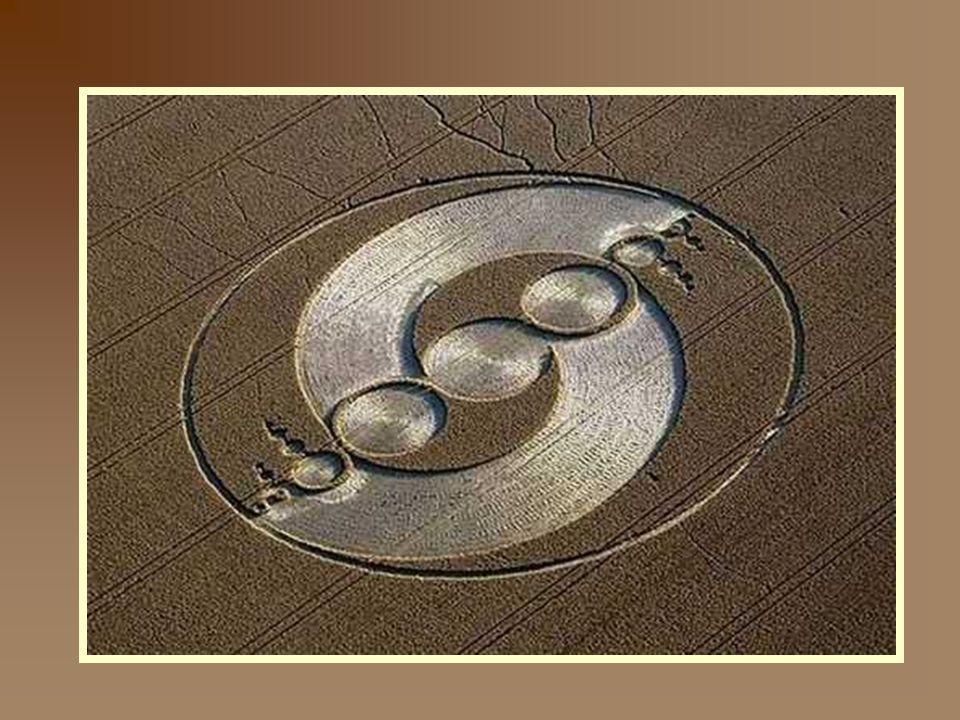 Ces crop circles sont réellement étonnants de par leur très grande précision et leur taille (plusieurs dizaines de mètres de long).