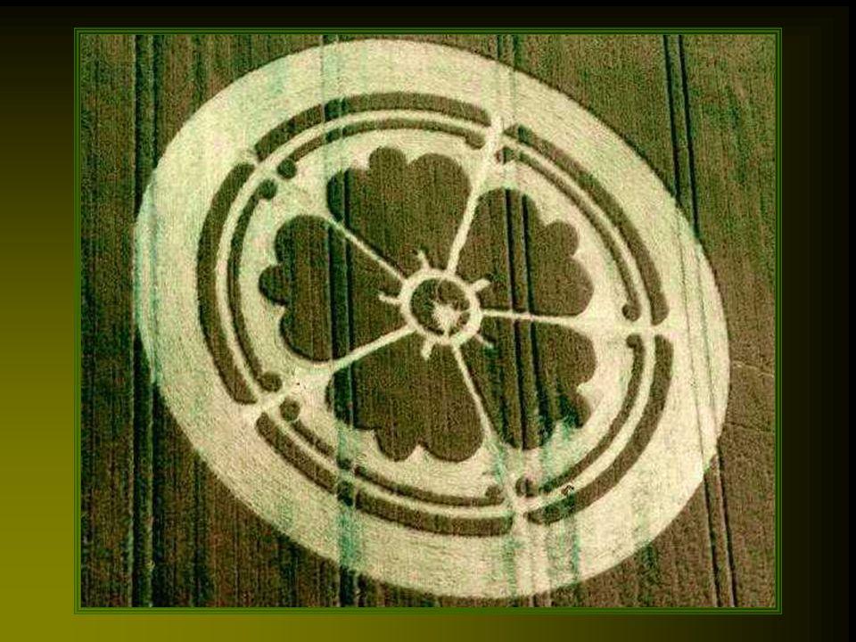 C'est vers le début des années 1980 que ces crop circles se font connaître un peu partout dans le monde, mais les premiers témoignages remontent à bien plus longtemps, vers le 14ème siècle.