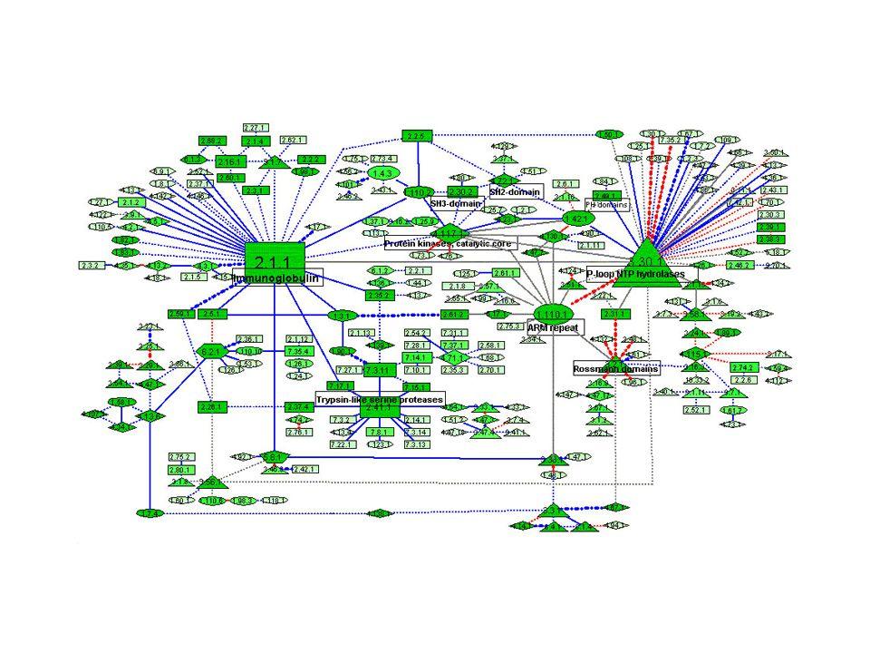 8 partenaires4 10 partenaires2 11 partenaires1 12 partenaires1 7 partenaires5 6 partenaires1 5 partenaires3 4 partenaires5 3 partenaires6 2 partenaires15 hétérodimère1 tétramère1 homodimère2 Pas de complexe54 Observations Nombre d'ORFs 100 ORFs 53%