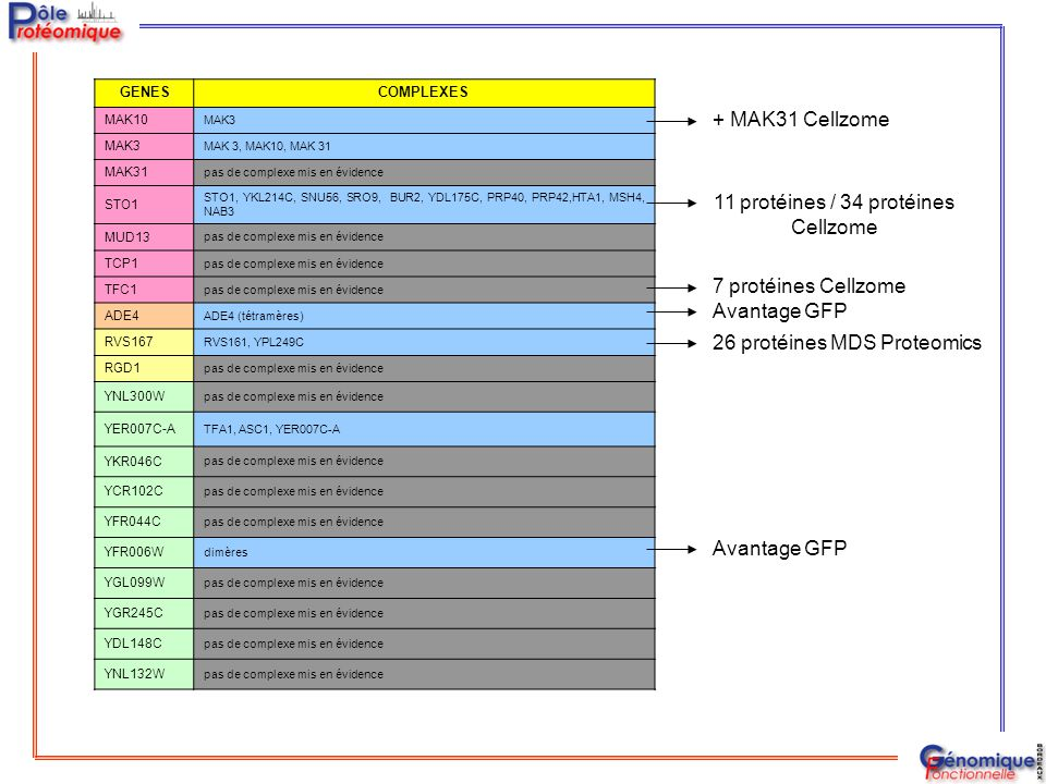 GENESCOMPLEXES MAK10 MAK3 MAK 3, MAK10, MAK 31 MAK31 pas de complexe mis en évidence STO1 STO1, YKL214C, SNU56, SRO9, BUR2, YDL175C, PRP40, PRP42,HTA1