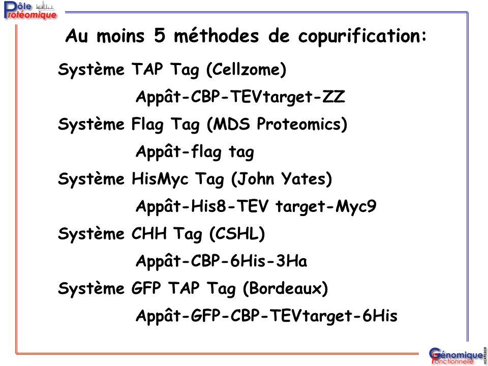Au moins 5 méthodes de copurification: Système TAP Tag (Cellzome) Système Flag Tag (MDS Proteomics) Système CHH Tag (CSHL) Système GFP TAP Tag (Bordea