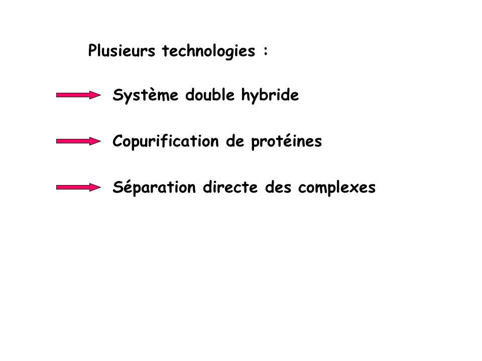 Plusieurs technologies : Système double hybride Copurification de protéines Séparation directe des complexes