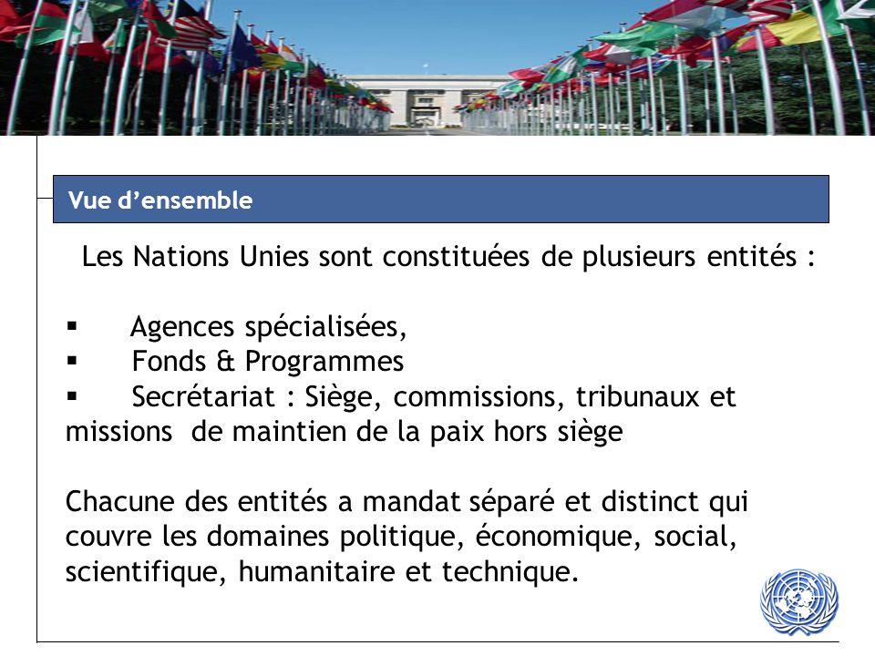 www.un.org/depts/ptd