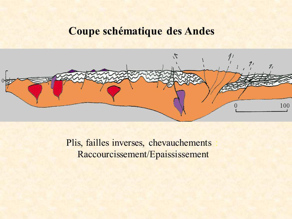 0100 0 Coupe schématique des Andes Plis, failles inverses, chevauchements : Raccourcissement/Epaississement