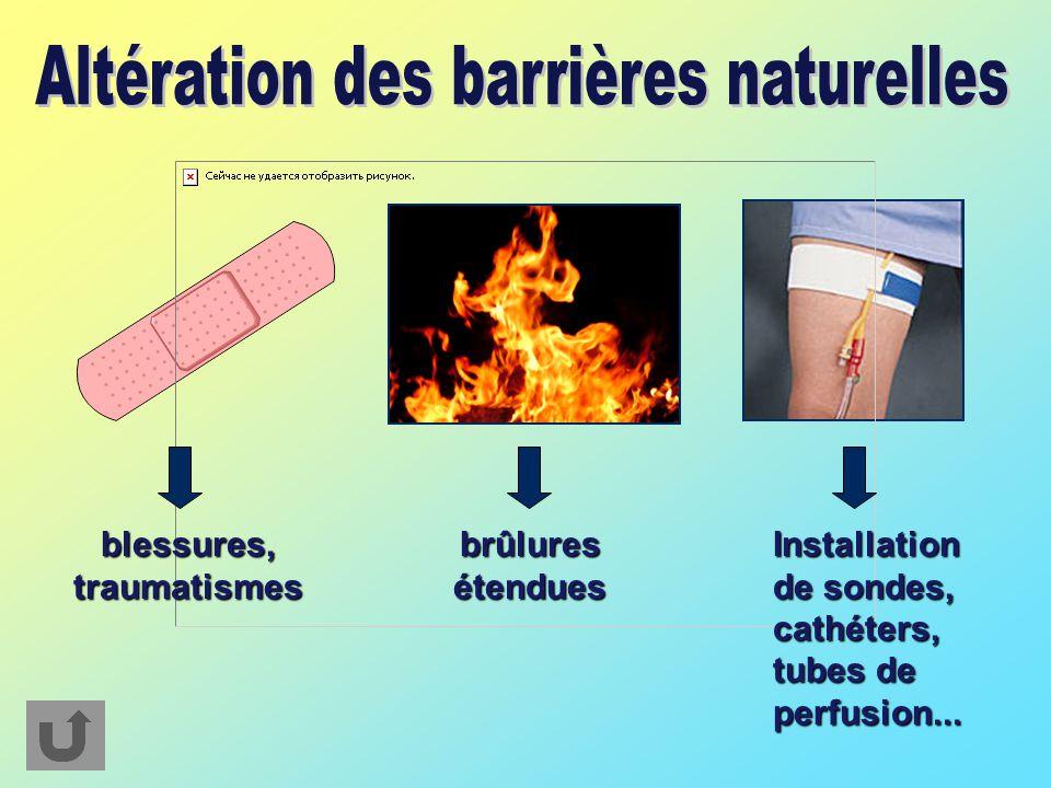 blessures, traumatismes brûlures étendues Installation de sondes, cathéters, tubes de perfusion...