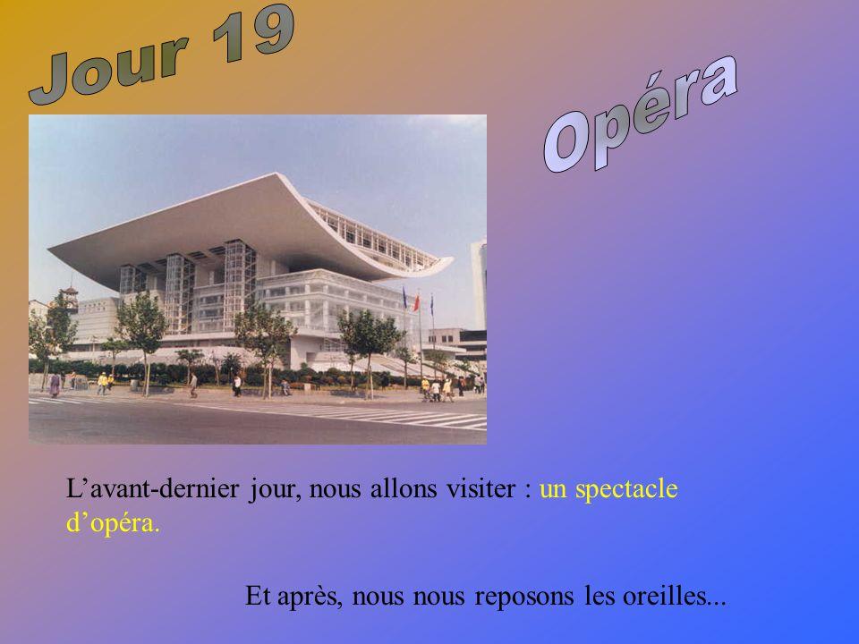 L'avant-dernier jour, nous allons visiter : un spectacle d'opéra.