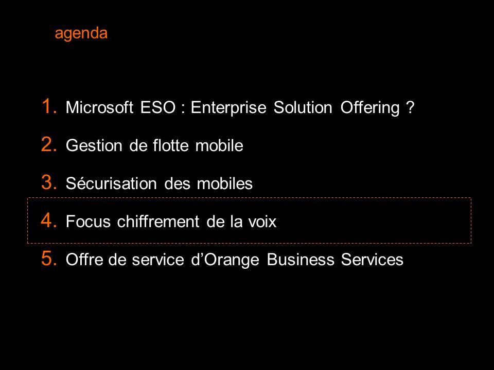 20  Microsoft ESO : Enterprise Solution Offering .