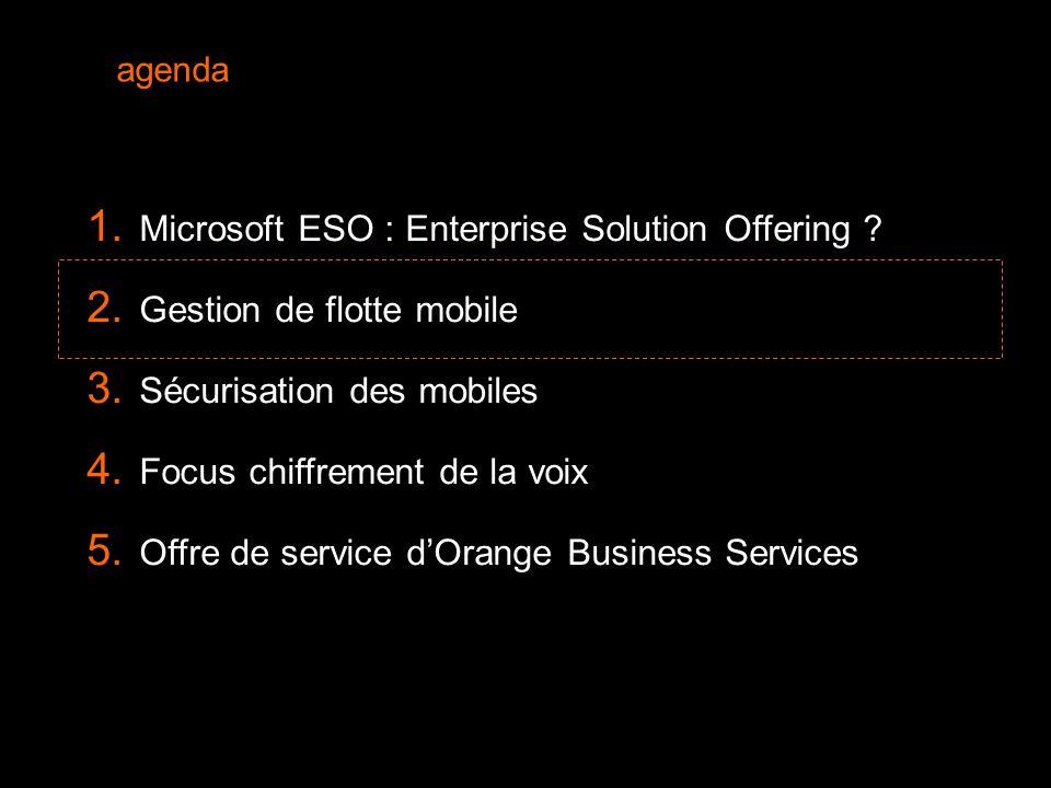 6  Microsoft ESO : Enterprise Solution Offering .