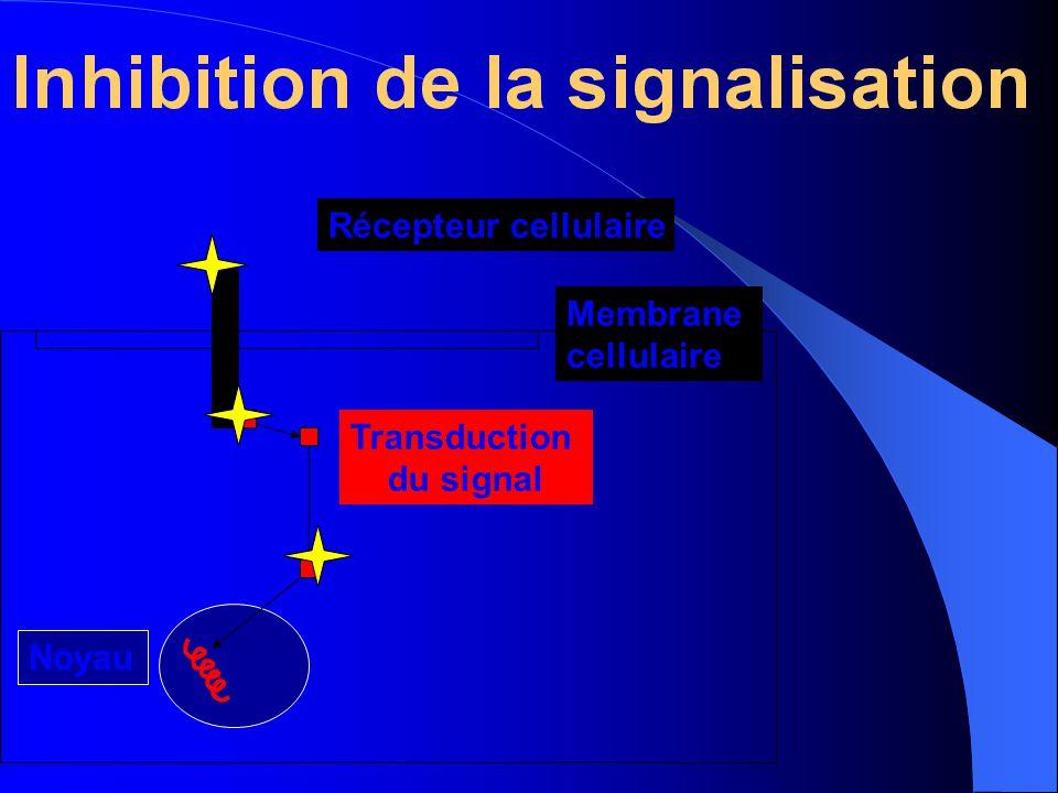 Récepteur cellulaire Membrane cellulaire Noyau Transduction du signal