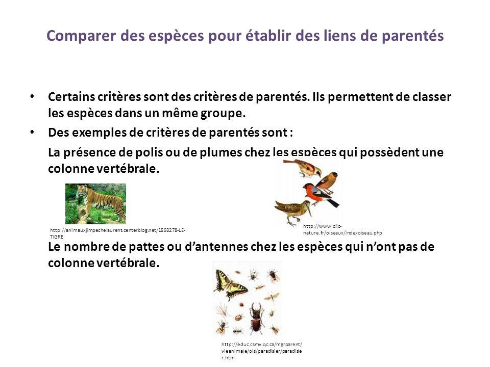 Bilan de l'unité 2 Tous les critères ne sont pas des critères de parentés.
