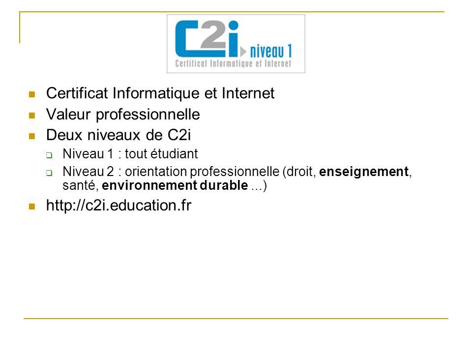 Certificat Informatique et Internet Valeur professionnelle Deux niveaux de C2i  Niveau 1 : tout étudiant  Niveau 2 : orientation professionnelle (dr