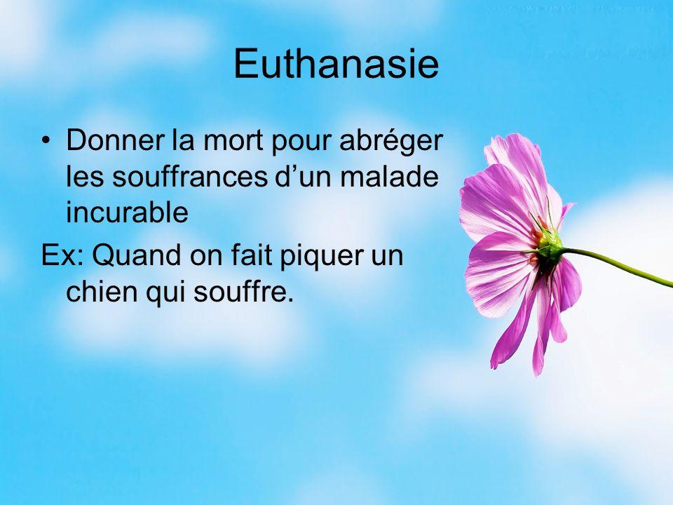 Euthanasie Donner la mort pour abréger les souffrances d'un malade incurable Ex: Quand on fait piquer un chien qui souffre.