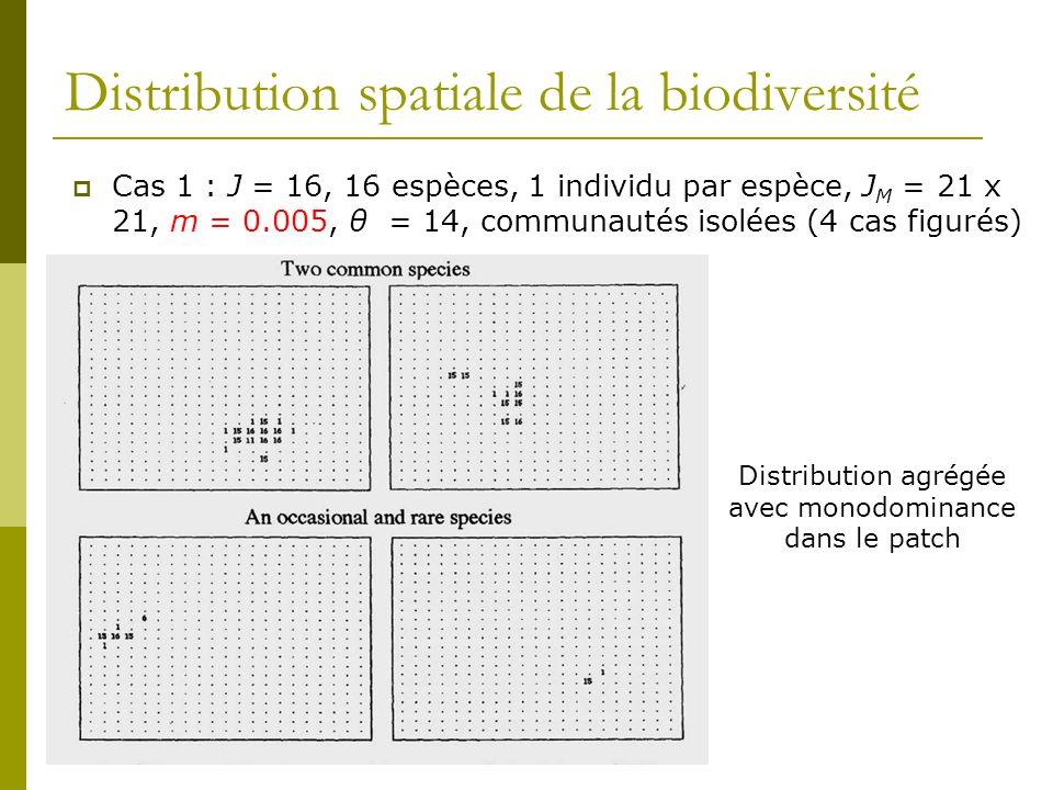Distribution spatiale de la biodiversité  Cas 1 : J = 16, 16 espèces, 1 individu par espèce, J M = 21 x 21, m = 0.005, θ = 14, communautés isolées (4