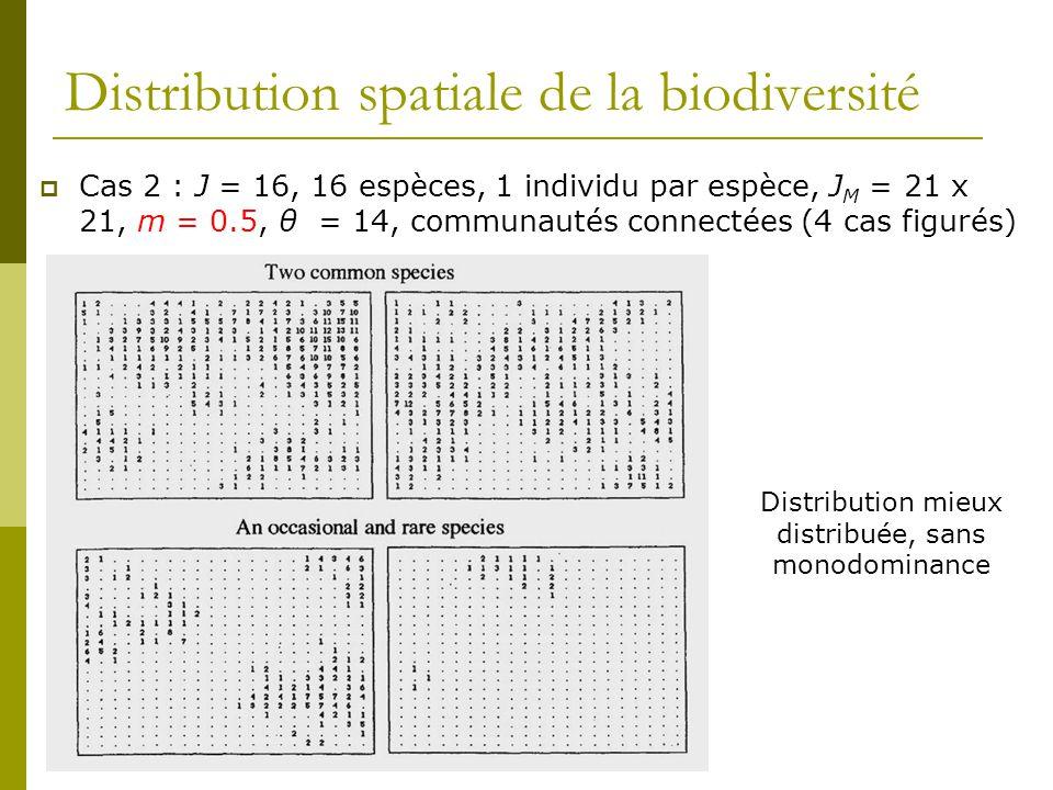 Distribution spatiale de la biodiversité  Cas 2 : J = 16, 16 espèces, 1 individu par espèce, J M = 21 x 21, m = 0.5, θ = 14, communautés connectées (