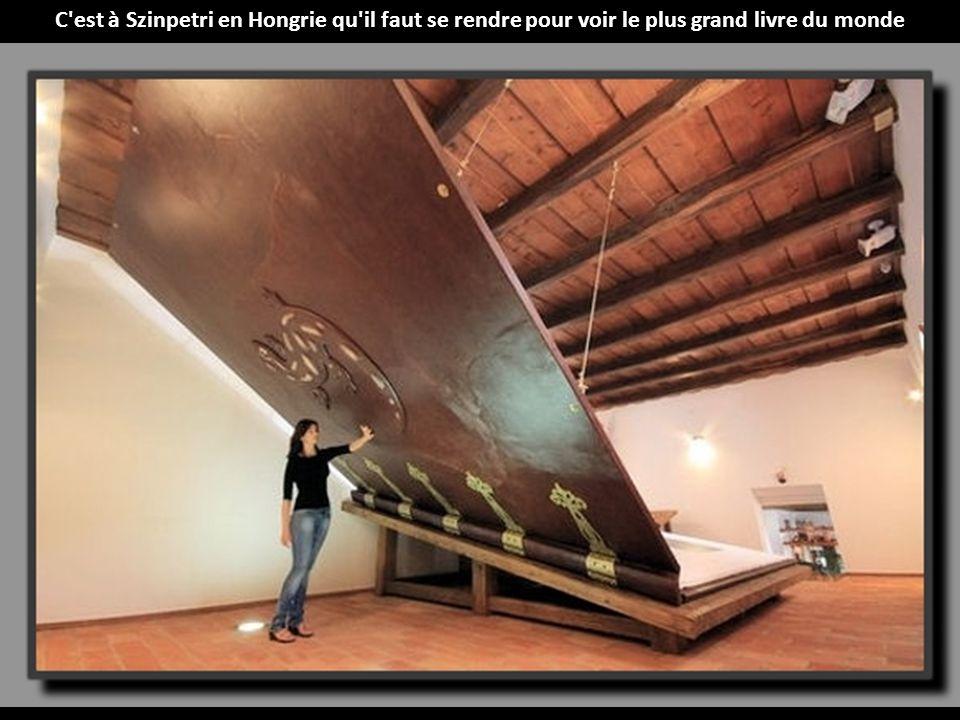 C est à Szinpetri en Hongrie qu il faut se rendre pour voir le plus grand livre du monde
