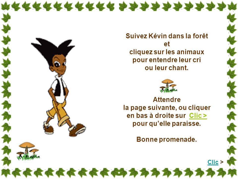 Suivez Kévin dans la forêt et cliquez sur les animaux pour entendre leur cri ou leur chant.
