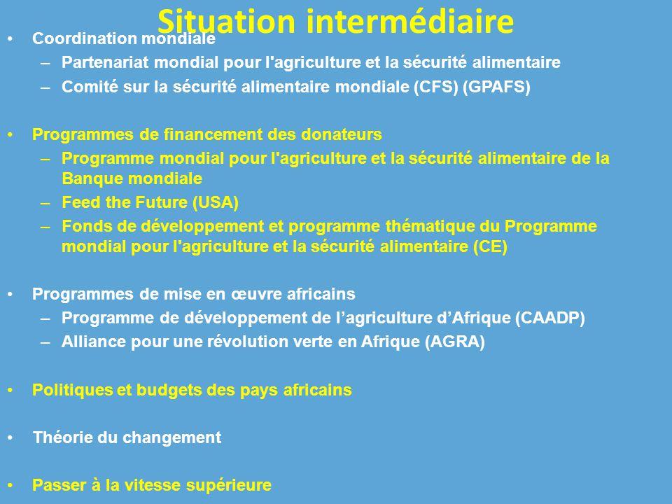 Situation intermédiaire Coordination mondiale –Partenariat mondial pour l agriculture et la sécurité alimentaire –Comité sur la sécurité alimentaire mondiale (CFS) (GPAFS) Programmes de financement des donateurs –Programme mondial pour l agriculture et la sécurité alimentaire de la Banque mondiale –Feed the Future (USA) –Fonds de développement et programme thématique du Programme mondial pour l agriculture et la sécurité alimentaire (CE) Programmes de mise en œuvre africains –Programme de développement de l'agriculture d'Afrique (CAADP) –Alliance pour une révolution verte en Afrique (AGRA) Politiques et budgets des pays africains Théorie du changement Passer à la vitesse supérieure