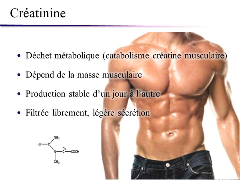 Créatinine