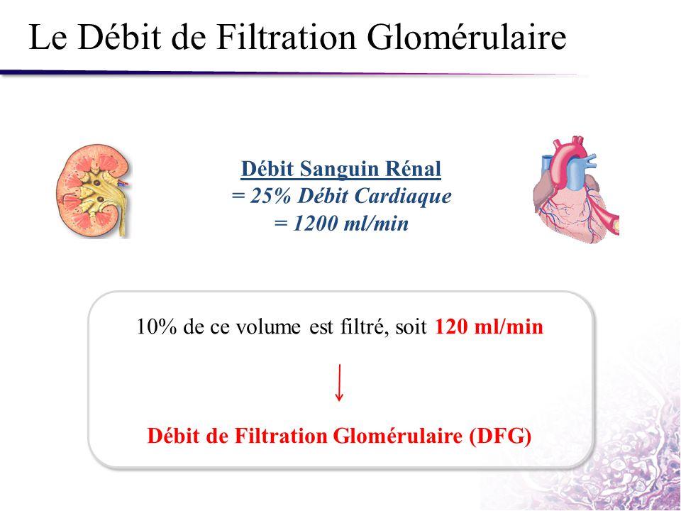 Le Débit de Filtration Glomérulaire Débit Sanguin Rénal = 25% Débit Cardiaque = 1200 ml/min 10% de ce volume est filtré, soit 120 ml/min Débit de Filt
