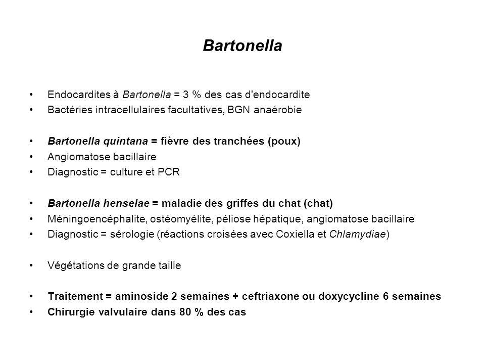 Trophyrema whipplei BG+ Formes cliniques : –forme polyviscérale multisystémique –endocardite –forme neurologique Diagnostic = PCR spécifique +++ Sérologie, culture, biopsies duodénales (coloration PAS) prélèvement systématique en cas d endocardite : LCR, salive, selles Chirurgie valvulaire souvent (PCR sur valve cardiaque opérée) Traitement = doxycycline 200 mg / jour + hydroxychloroquine 600 mg / jour + BACTRIM fort 6 cps / jour 18 mois