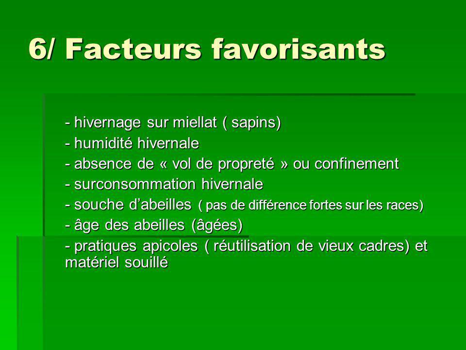 6/ Facteurs favorisants - hivernage sur miellat ( sapins) - humidité hivernale - humidité hivernale - absence de « vol de propreté » ou confinement -