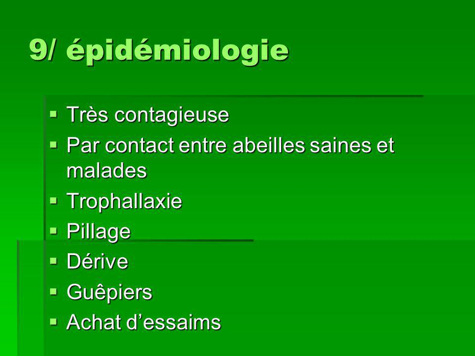 9/ épidémiologie  Très contagieuse  Par contact entre abeilles saines et malades  Trophallaxie  Pillage  Dérive  Guêpiers  Achat d'essaims