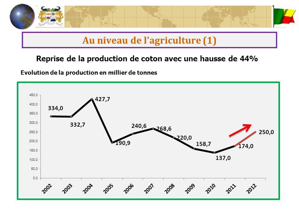 Au niveau de l'agriculture (2) baisse des céréales et des tubercules mais une hausse des produits maraîchers et des cultures d'exportation Production agricole hors coton en 2012 CultureProduction (%) Céréales -5,6 dont maïs 0,7 Racines et tubercules -5,3 dont Igname 0,2 Légumineuses2,2 Maraîchères52,9 Industrielle25,5 dont Ananas52,3