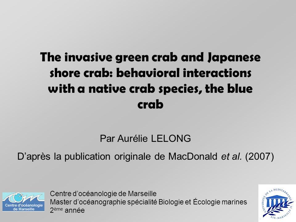 Introduction Hemigrapsus sanguineus Espèce introduite depuis le Pacifique ouest en 1988.