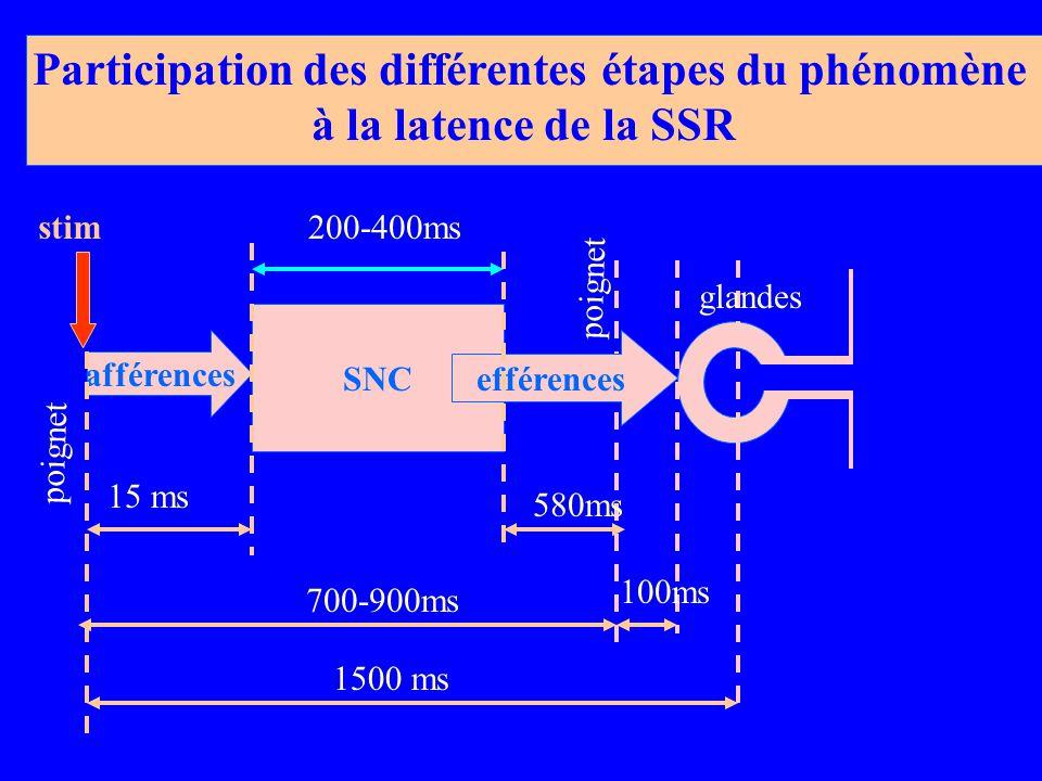 SNC afférences 1500 ms 700-900ms 15 ms 100ms 200-400ms 580ms Participation des différentes étapes du phénomène à la latence de la SSR poignet efférences poignet glandes stim