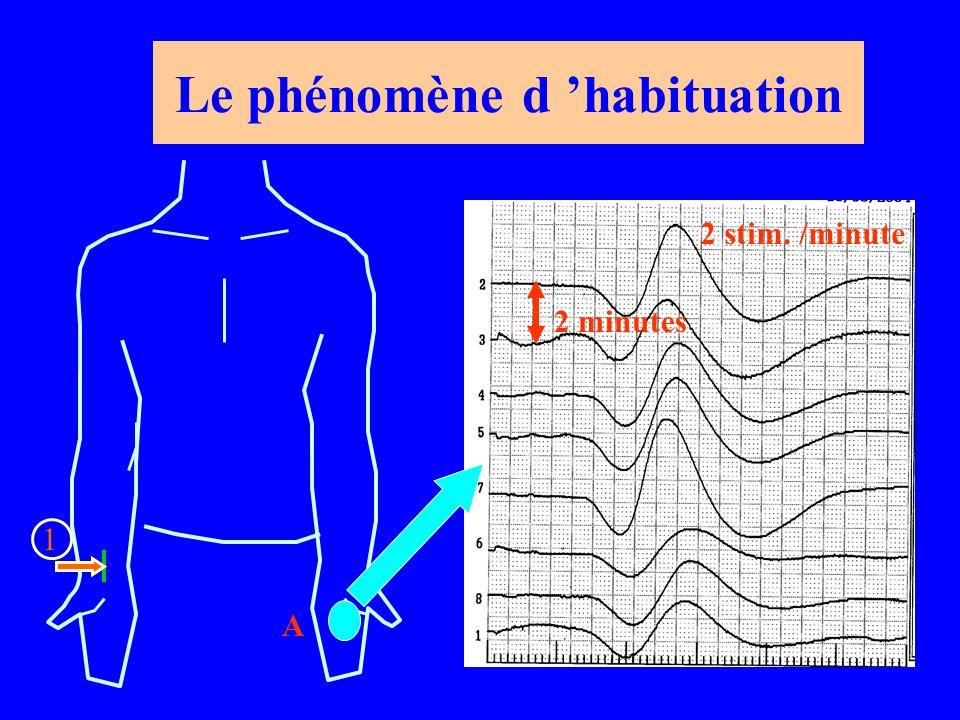 Le phénomène d 'habituation 1 A 2 minutes 2 stim. /minute