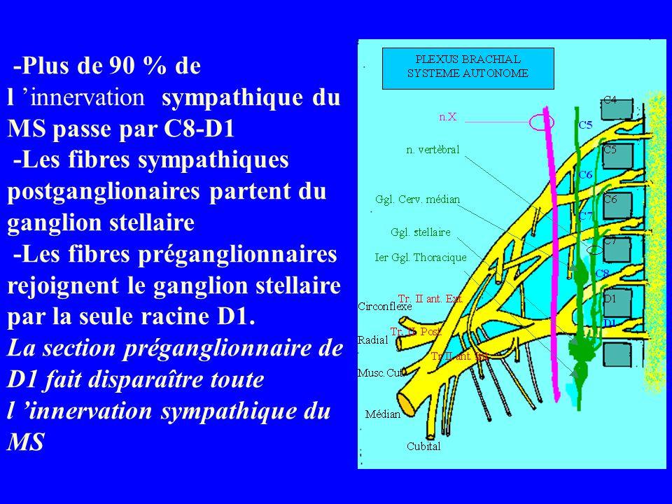 -Plus de 90 % de l 'innervation sympathique du MS passe par C8-D1 -Les fibres sympathiques postganglionaires partent du ganglion stellaire -Les fibres préganglionnaires rejoignent le ganglion stellaire par la seule racine D1.
