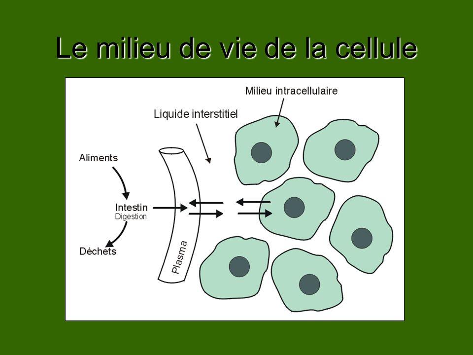Le milieu de vie de la cellule