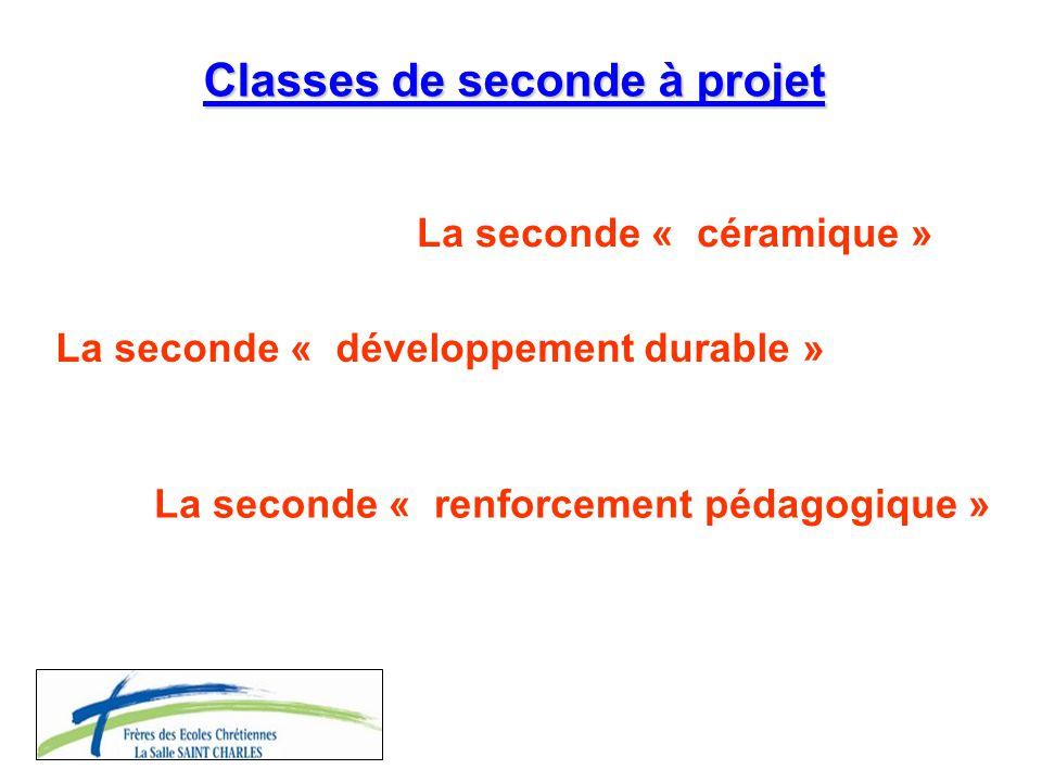Classes de seconde à projet La seconde « céramique » La seconde « développement durable » La seconde « renforcement pédagogique »