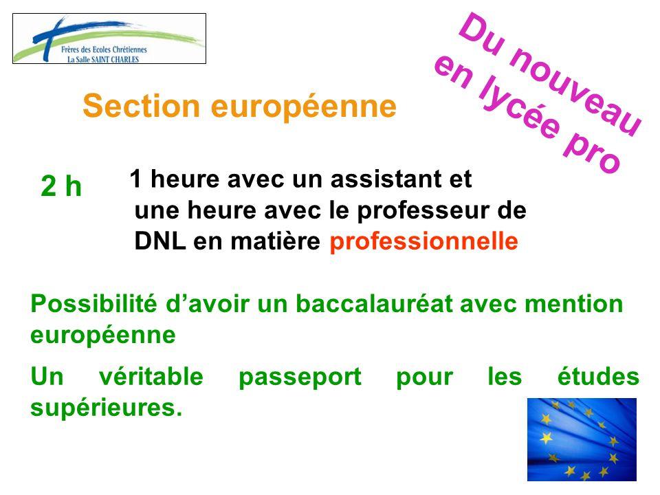 Du nouveau en lycée pro Section européenne 2 h 1 heure avec un assistant et une heure avec le professeur de DNL en matière professionnelle Possibilité