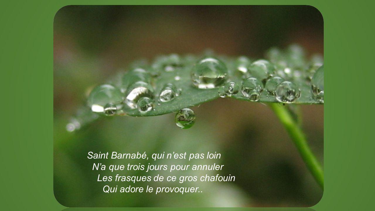 Saint Barnabé, qui n'est pas loin N'a que trois jours pour annuler Les frasques de ce gros chafouin Qui adore le provoquer..