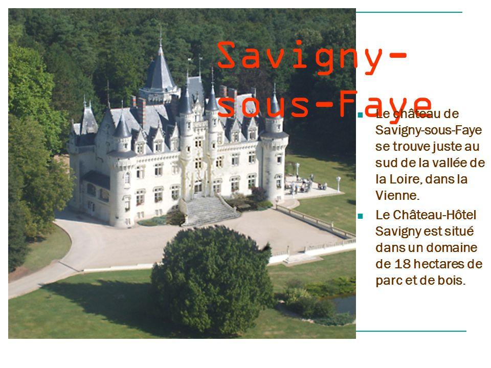Saum ur Le château de Saumur a connu ses premières fortifications sous Thibaud, comte de Blois, au Xe siècle.