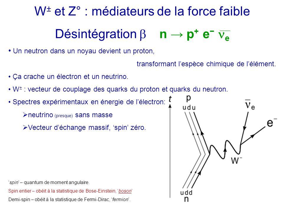 W ± et Z° : médiateurs de la force faible Désintégration  n → p + e − e Un neutron dans un noyau devient un proton, transformant l'espèce chimique