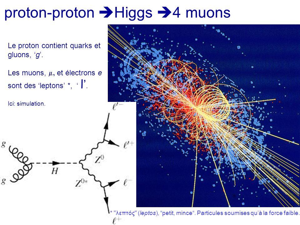 proton-proton  Higgs  4 muons Le proton contient quarks et gluons, 'g'. Les muons,  et électrons e sont des 'leptons' *, ' l'. Ici: simulation. *