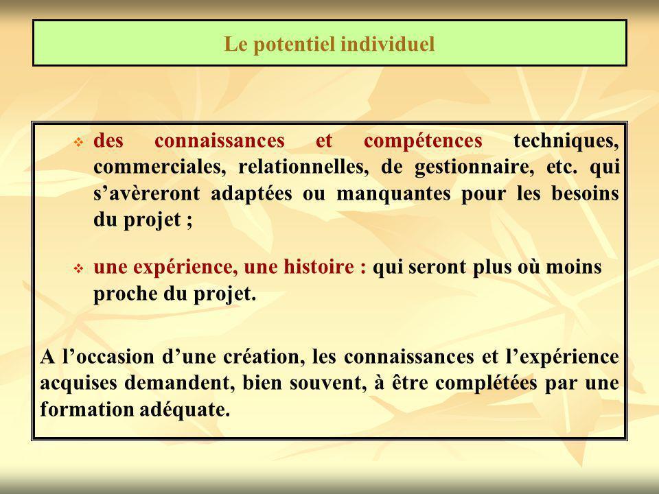   des connaissances et compétences techniques, commerciales, relationnelles, de gestionnaire, etc. qui s'avèreront adaptées ou manquantes pour les b