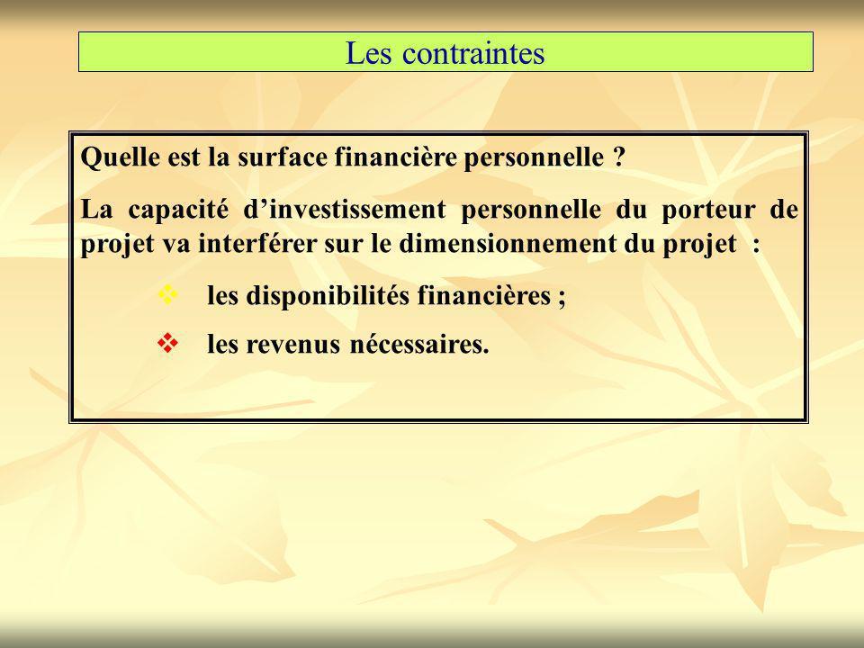 Les contraintes Quelle est la surface financière personnelle ? La capacité d'investissement personnelle du porteur de projet va interférer sur le dime