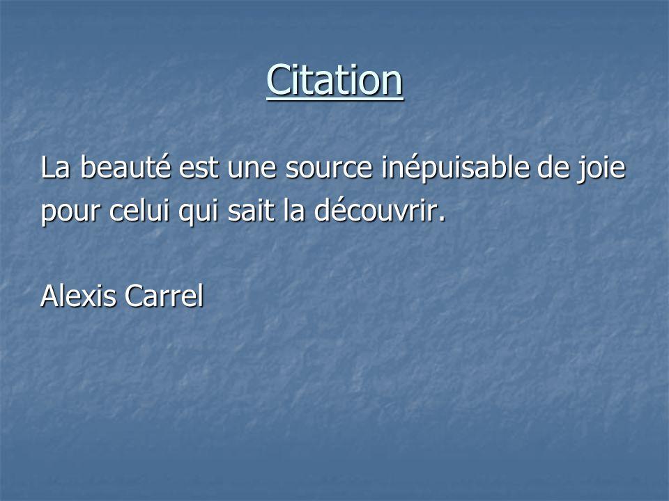 Citation La beauté est une source inépuisable de joie pour celui qui sait la découvrir. Alexis Carrel