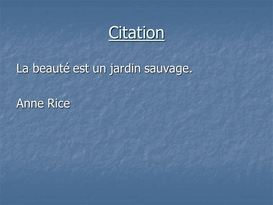 Citation La beauté est un jardin sauvage. Anne Rice