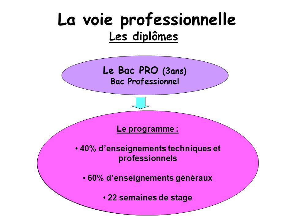 Et après :  entrer dans la vie professionnelle  poursuivre ses études (BTS)  se spécialiser Objectif : S'insérer professionnellement (il répond par