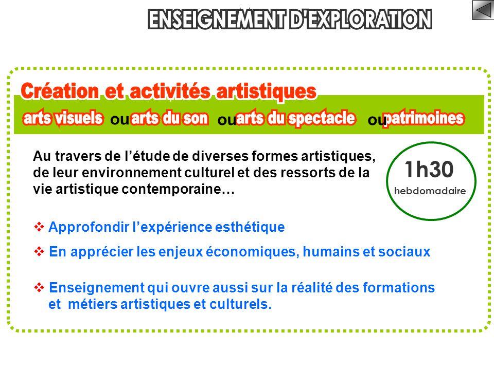 1h30 hebdomadaire Au travers de l'étude de diverses formes artistiques, de leur environnement culturel et des ressorts de la vie artistique contempora
